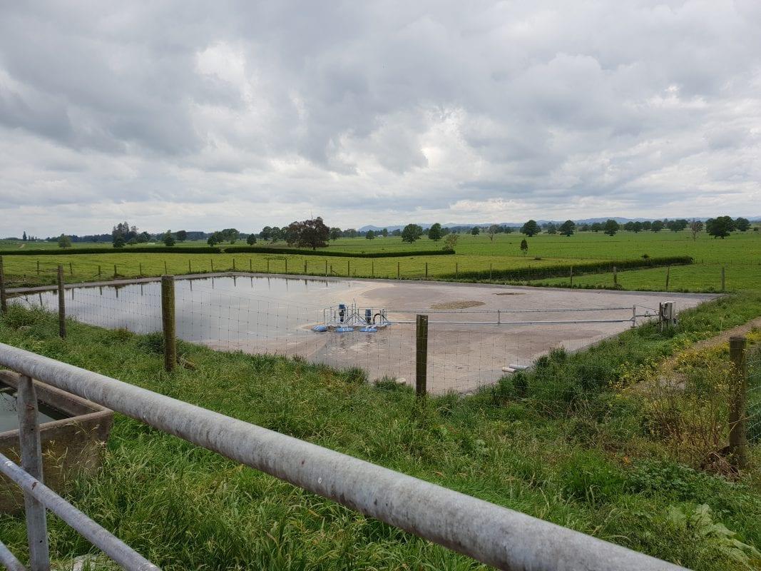 Healthy Efffluent Pond